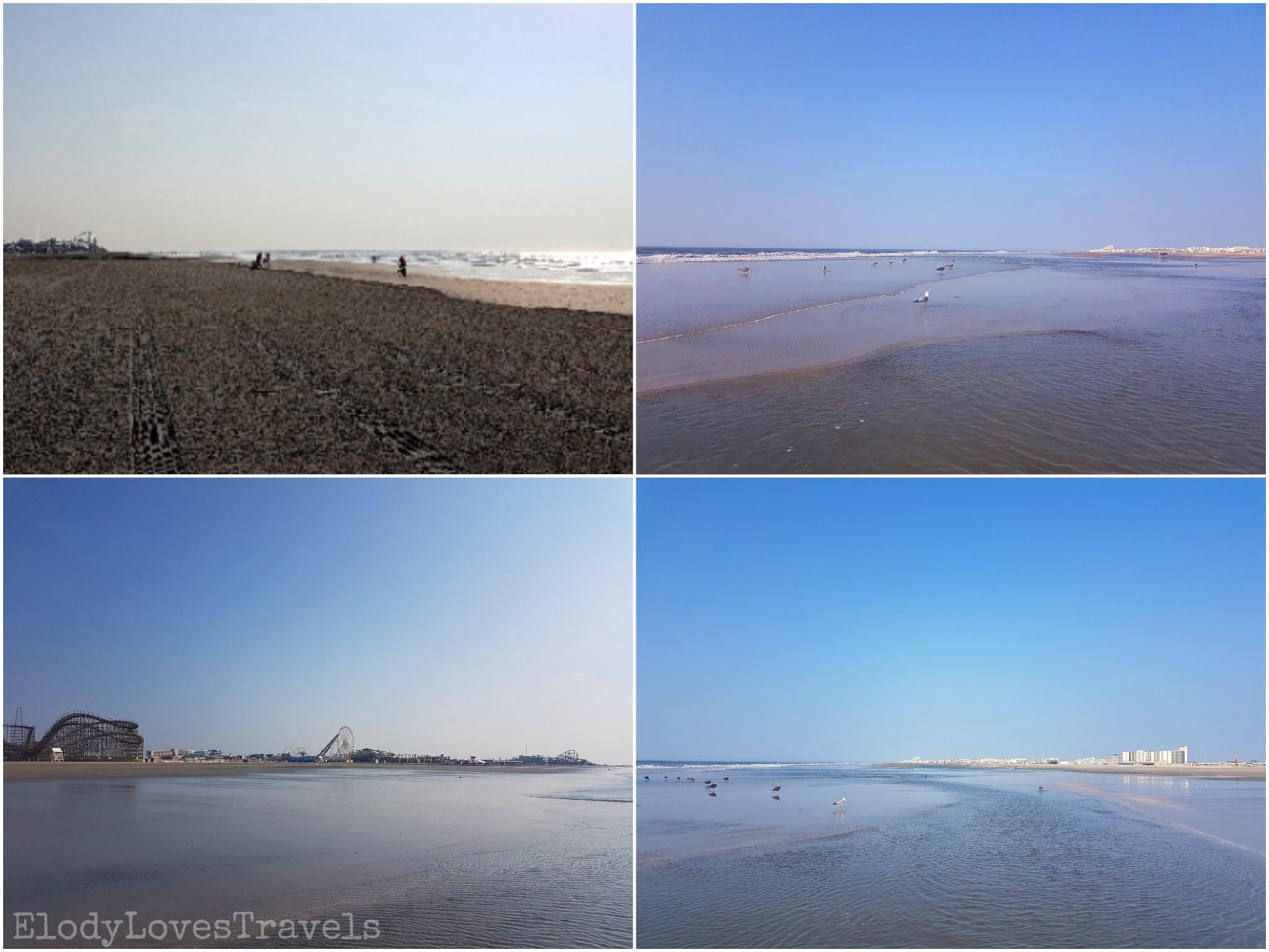 PicsArt_01-21-03.24.05