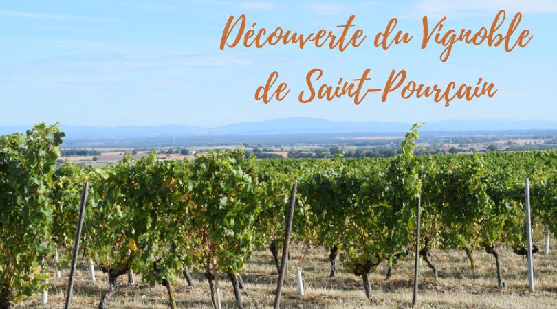 Découverte du Vignoblede Saint-Pourçain